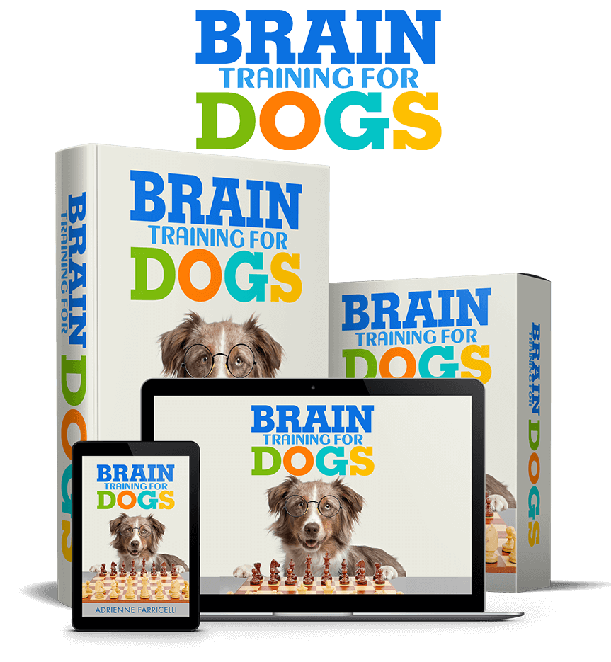 Brain Training For Dogs - By Online Dog & Puppy Trainer, Adrienne Farricelli